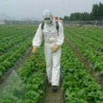 Chinese pesticide companies expected to see mergers and increasing exports in 2020